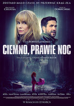 Movie poster Ciemno, prawie noc